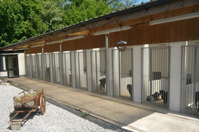 Cow Hill Dog Kennels Preston Lancashire