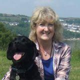 cow hill dog kennels testimonial